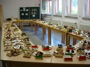 Pilzausstellung Sept. 2005 im BG b